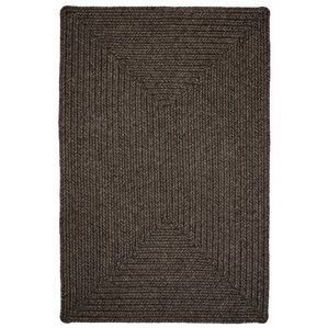 Burnished Braided Indoor/Outdoor Area Rug