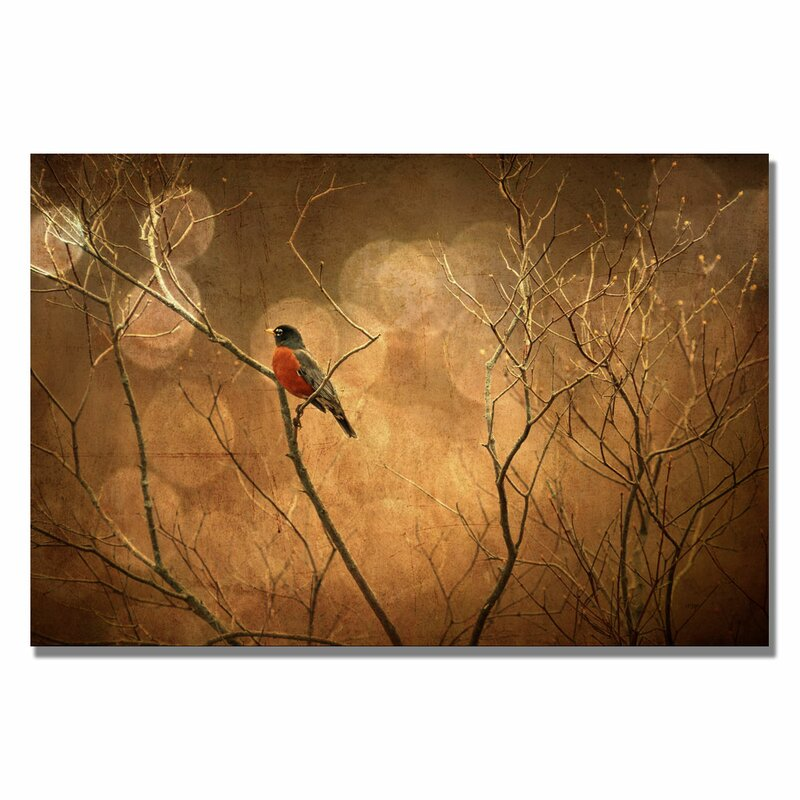 'The Robin' by Lois Bryan Photographic Print on Canvas