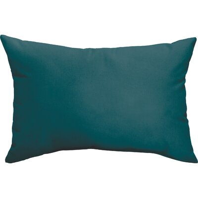 Wrought Studio McMillian Indoor/Outdoor Pillow Set Color: Teal