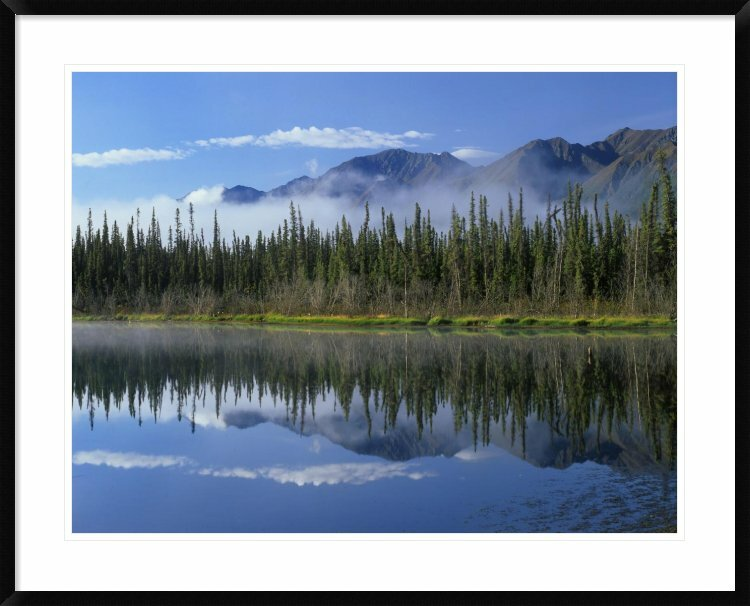 Global Gallery Lake Reflecting Mountain Range And Forest