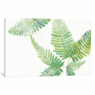 Wrought Studio 'Ferns II' Painting Print on Wrapped Canvas