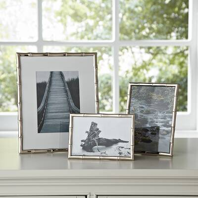 Roxanna Galvanized Metal Who Rescued Who Picture Frame Joss Main