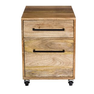Shery 2 Drawers Mobile Vertical File