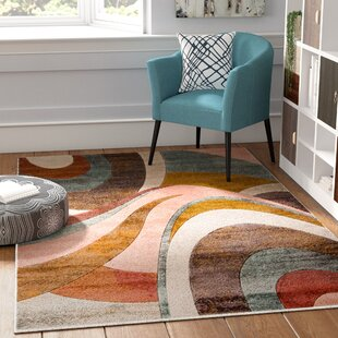 Sunroom Rugs Wayfair