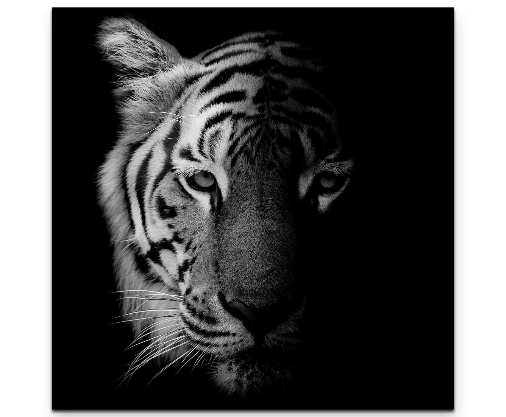 1775a9fe4 East Urban Home Portrait of a Tiger Print on Canvas | Wayfair.co.uk