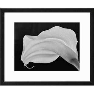 Well-known Calla Lily Wall Art | Wayfair KT95