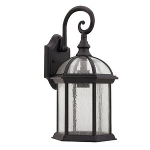 Springboro Divine 1-Light Outdoor Wall Lantern