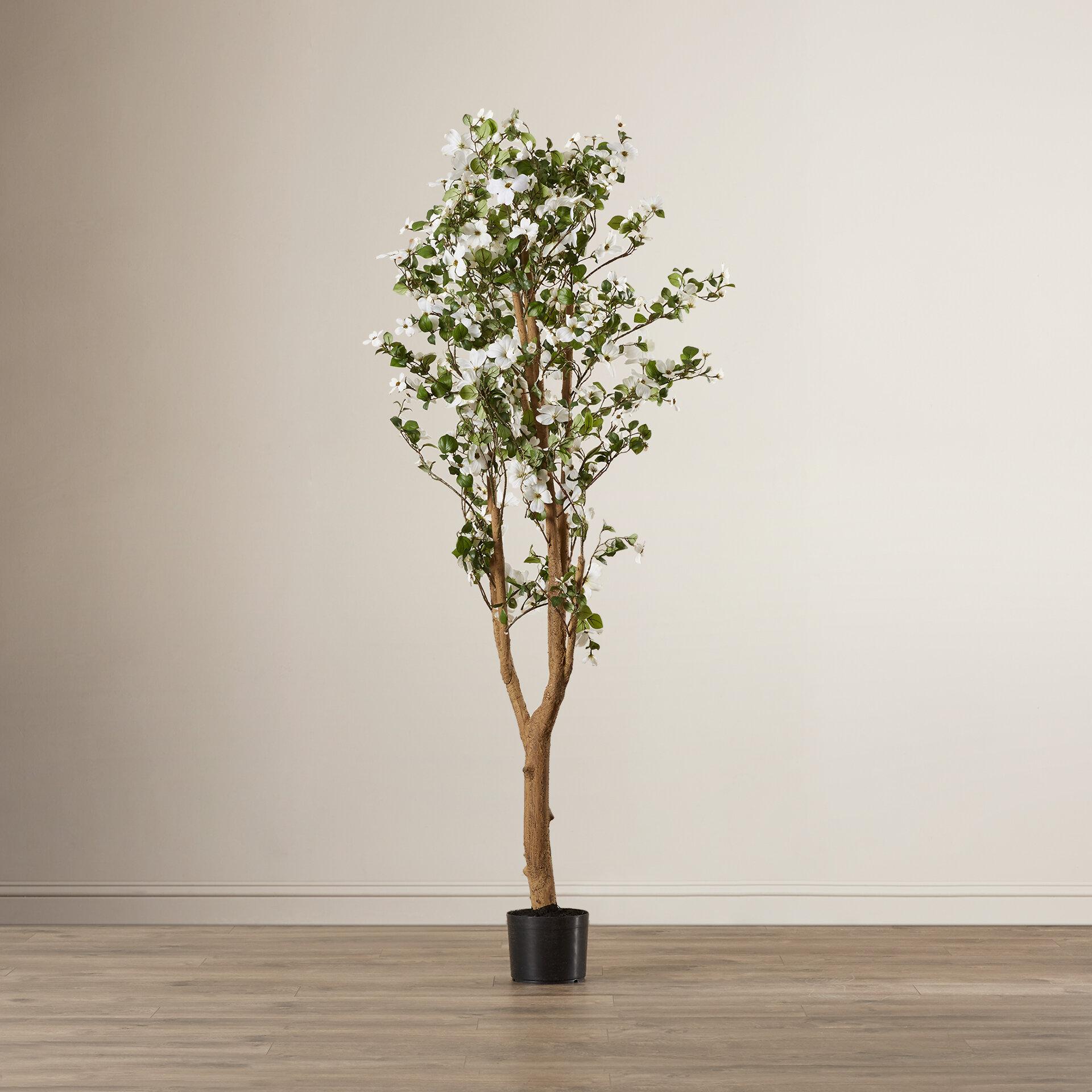 Red barrel studio silk dogwood tree in pot reviews wayfair mightylinksfo