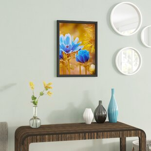 Double Panel Acrylic Wall Frame 28x40 Contemporary Picture