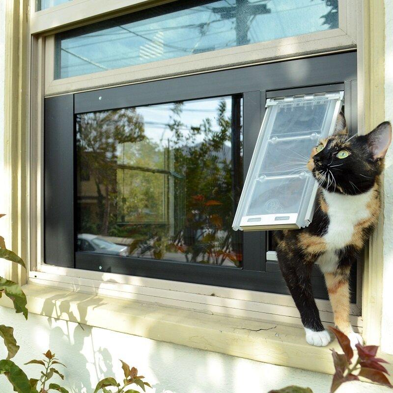 Endura Flap Thermo Sash 3E Pet Door & EnduraFlap Endura Flap Thermo Sash 3E Pet Door | Wayfair