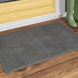 Indoor Door Mats You\'ll Love | Wayfair