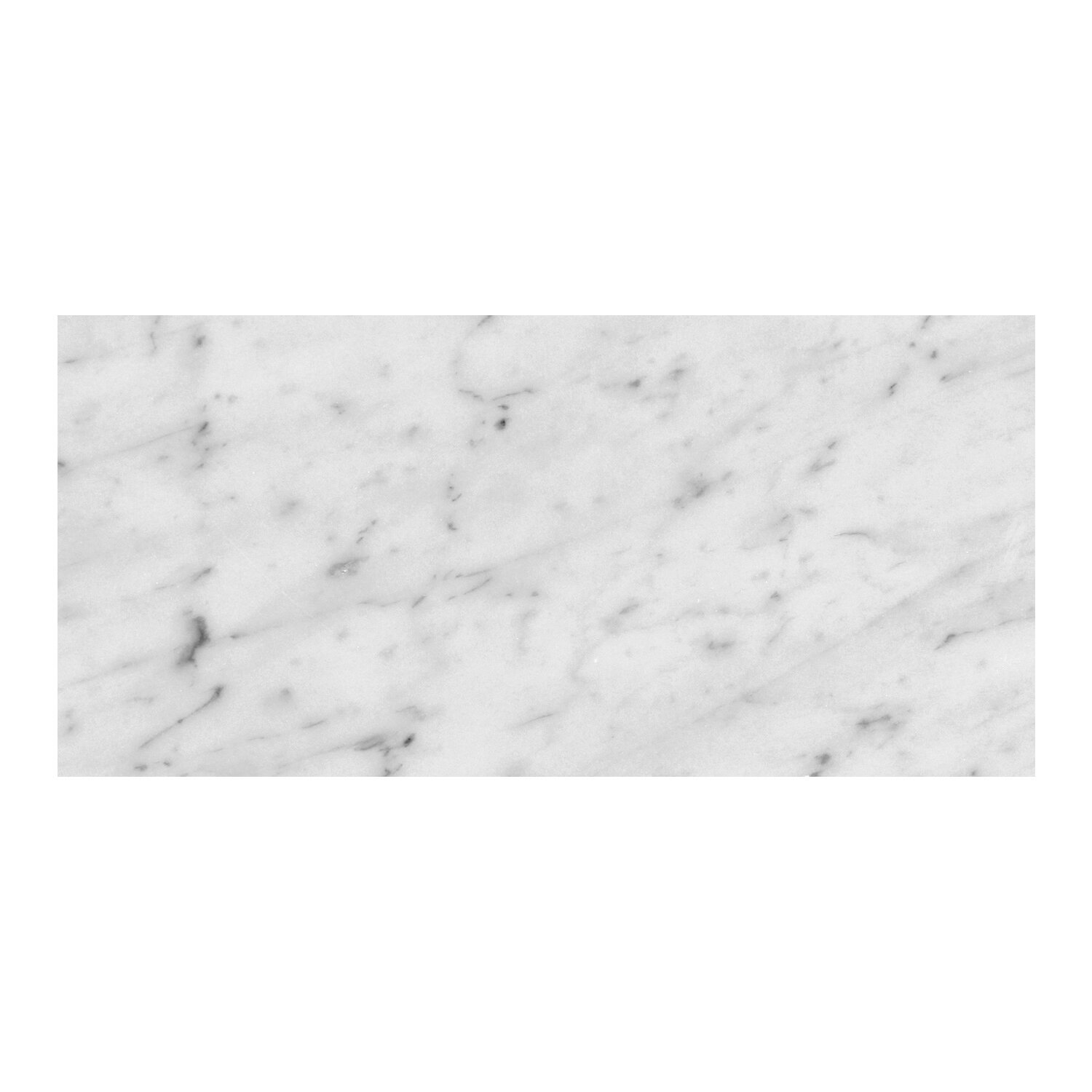 Seven Seas Bianco Carrara 6 X 12 Marble Field Tile In Gray Wayfair