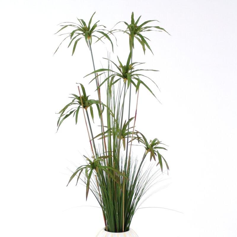 Distinctive Designs Umbrella Papyrus Floor Plant In Vase Wayfair