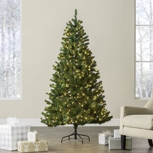 green spruce artificial christmas tree with clearwhite lights