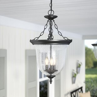 Outdoor hanging lights youll love wayfair save to idea board workwithnaturefo