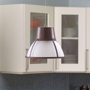 Indoor Hanging Lights | Wayfair