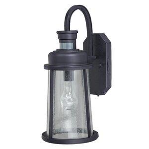 Cascades 1-Light Outdoor Wall Lantern