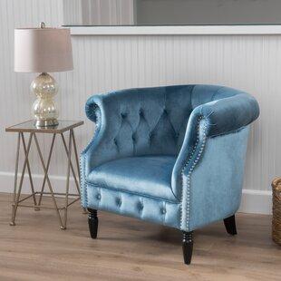 Aqua Chair | Wayfair