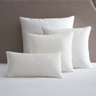 Delicieux Birch Lane Pillow Insert