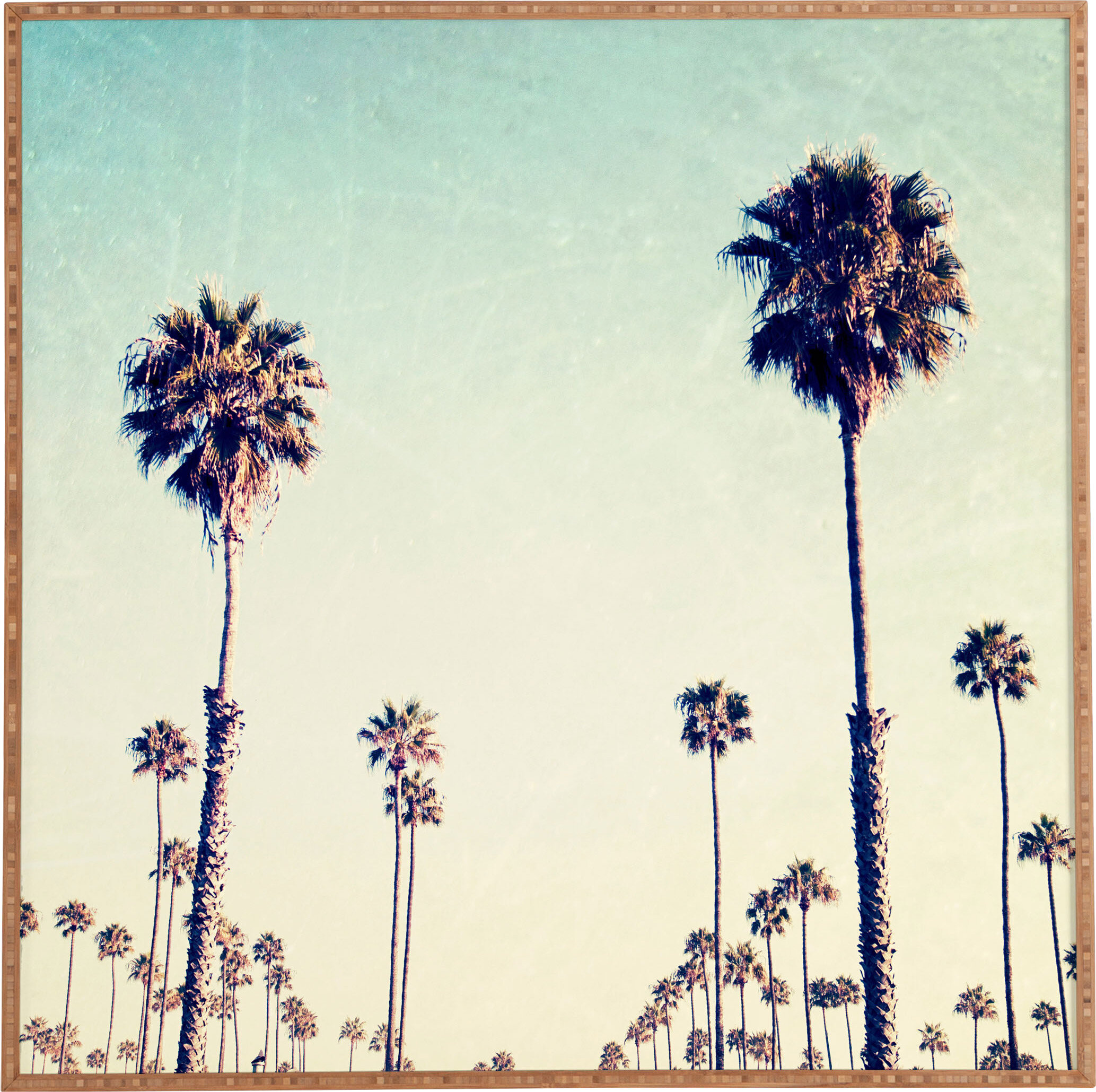 California Palm Trees Framed Wall Art & Reviews | Joss & Main