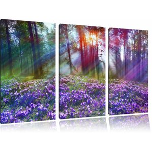 purple crocus in the forest 3 piece wall art set on canvas