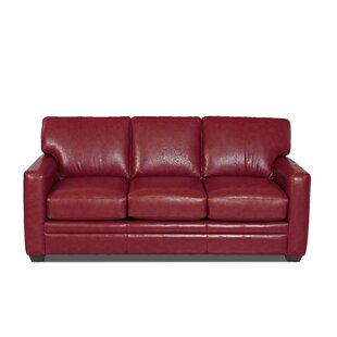 American Leather Sleeper Sofa | Wayfair