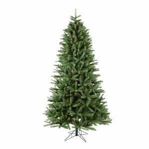 Pe Christmas Trees Clearance
