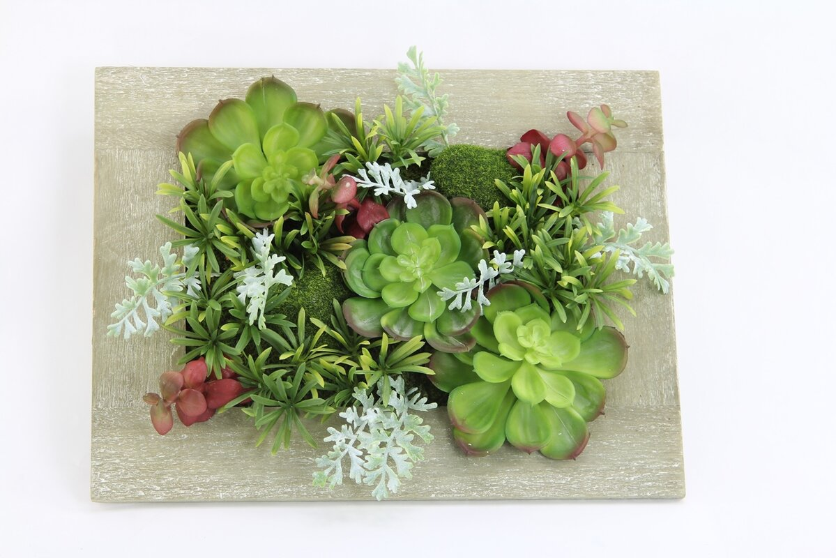 Ebern designs artificial hanging succulent plant with rustic artificial hanging succulent plant with rustic wooden picture frame jeuxipadfo Image collections