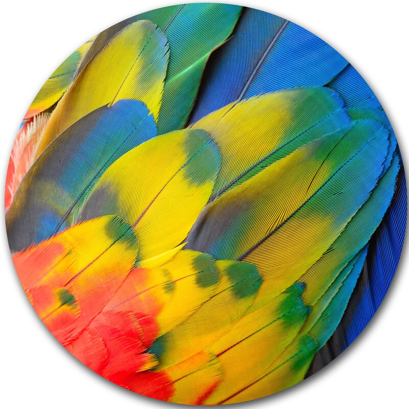 DesignArt \'Scarlet Macaw Feathers\' Graphic Art Print on Metal | Wayfair