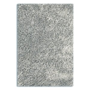Colorville Silver Area Rug