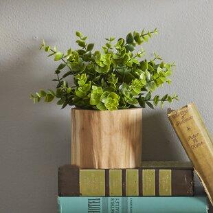 Faux Naturalist Eucalyptus Bonsai Desk Top Plant In Planter