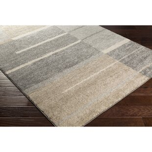 Edmeston Gray Neutral Area Rug