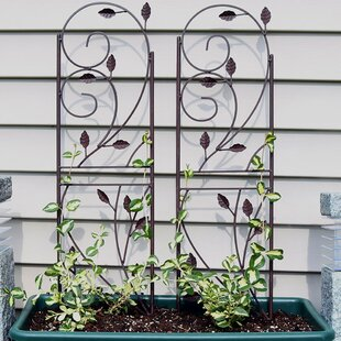 Superbe Higginsville Rustic Plant Design Steel Gothic Trellis (Set Of 2)