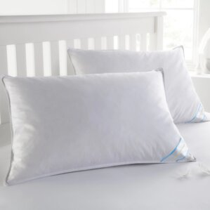 Duck Feather Pillow Set (Set of 2) by Alwyn Home