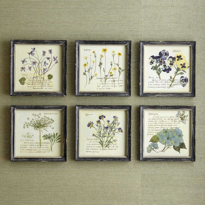Birch Lane™ Pressed Flowers Wall Art & Reviews | Wayfair