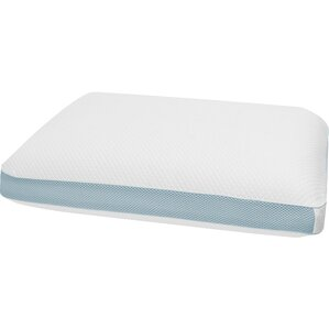 Extreme Memory Foam Standard Pillow by BioPEDIC