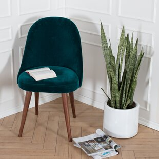 Ginny Upholstered Dining Chair