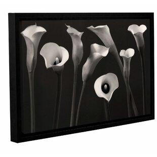 Ideal Calla Lily Wall Art | Wayfair JI07