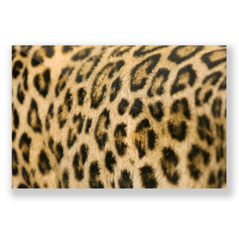 Two Palms Art Bazaar \'Supple Leopard\' Photographic Print Wall Art ...