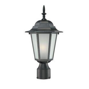 Raleigh Outdoor 1 Light Lantern Head