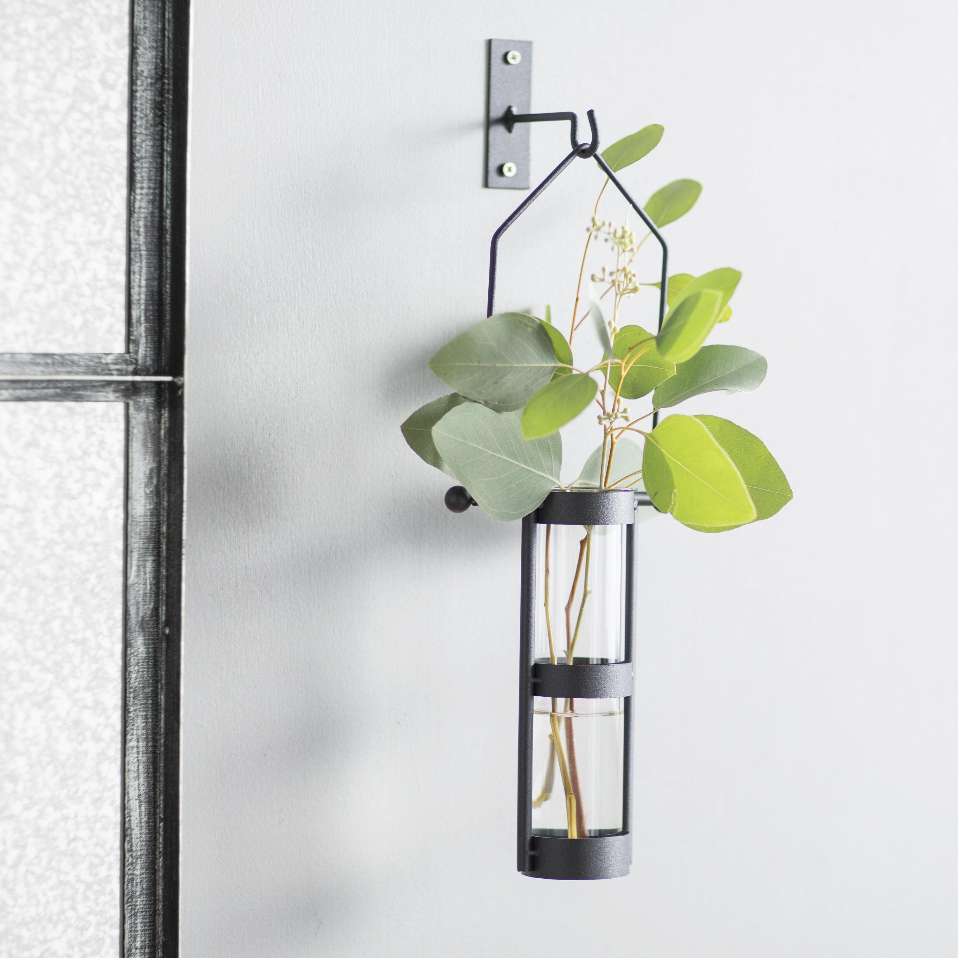 August grove hanging cylinder wall vase reviews wayfair reviewsmspy