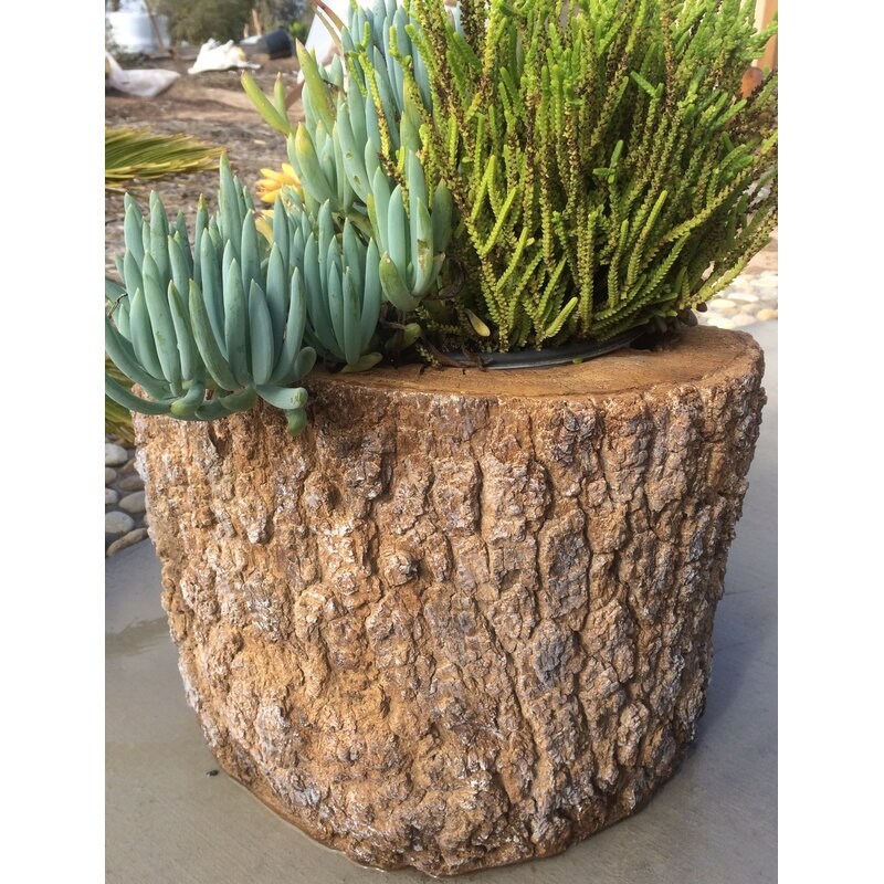 Brookes Pine Concrete Planter Box