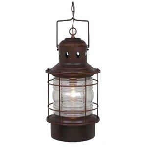 Bonaventure 1-Light Outdoor Hanging Lantern