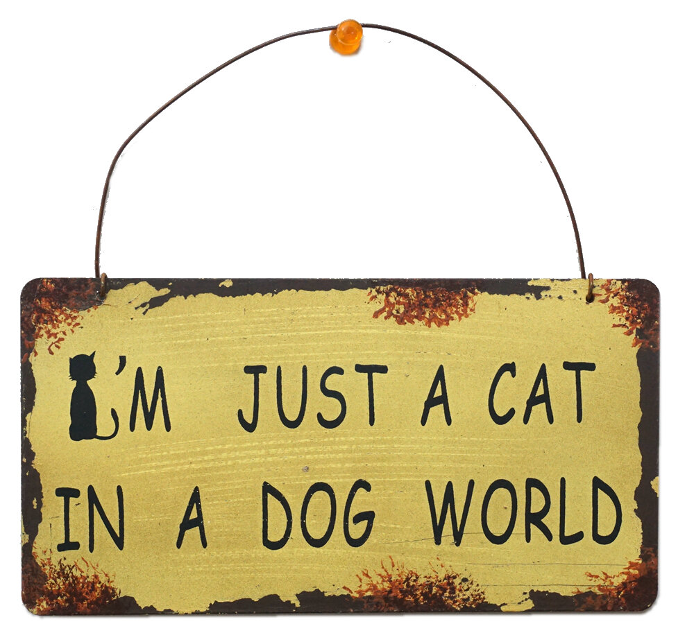 AttractionDesignHome I\'m Just a Cat Wisdom Sign Wall Décor | Wayfair