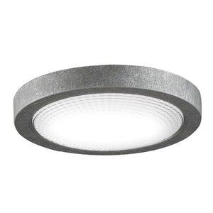 Spitfire 1-Light Ceiling Fan Light Kit