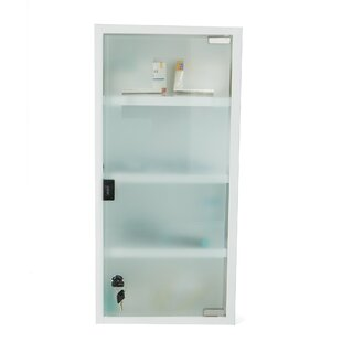 10 5 X 22 25 Wall Mount Cabinet