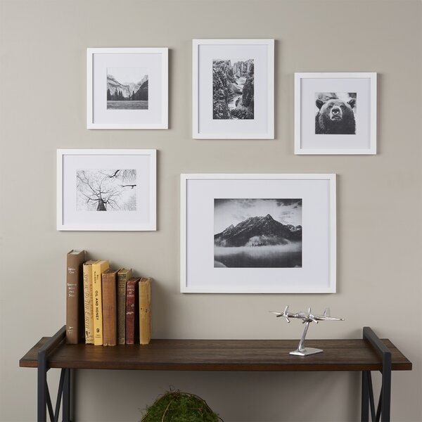 Wayfair Basics Wayfair Basics 5 Piece Picture Frame Set