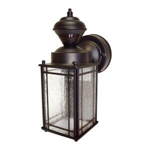 Fairford 1-Light Outdoor Wall Lantern