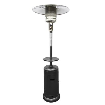 Sol 72 Outdoor Glendale Tall 48,000 BTU Propane Patio Heater Finish: Hammered Silver