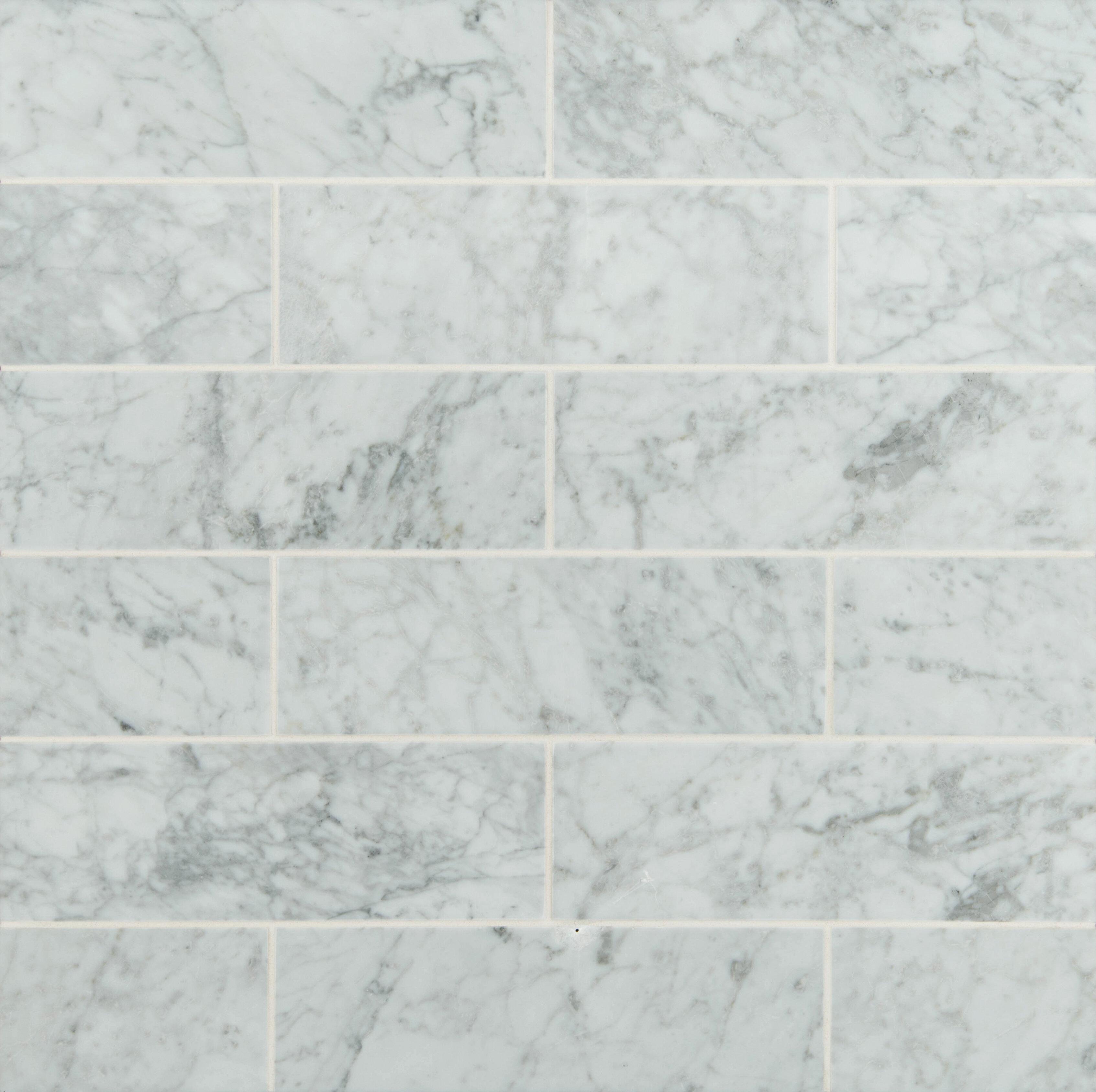 Msi 4 X 12 Honed Marble Tile In Arabeo Carrara Reviews Wayfair